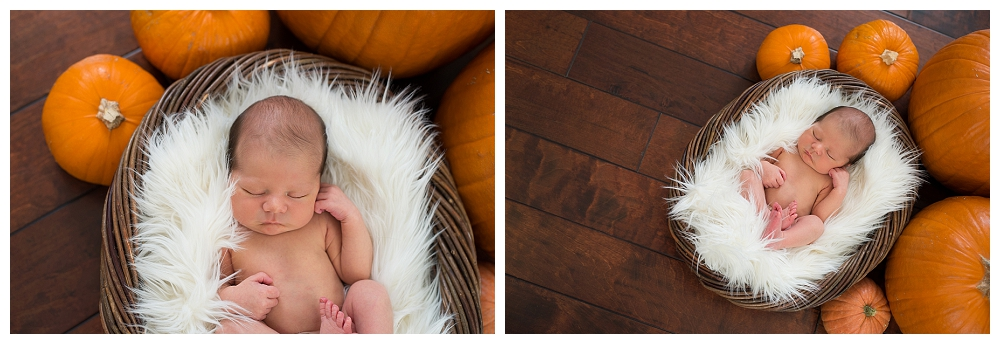 Portland Newborn Photography Vancouver Photographer_0013