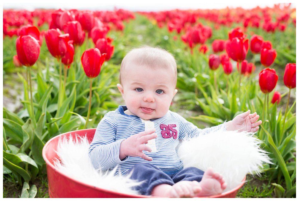 Vancouver Photographer Photography Portland Tulips_0009