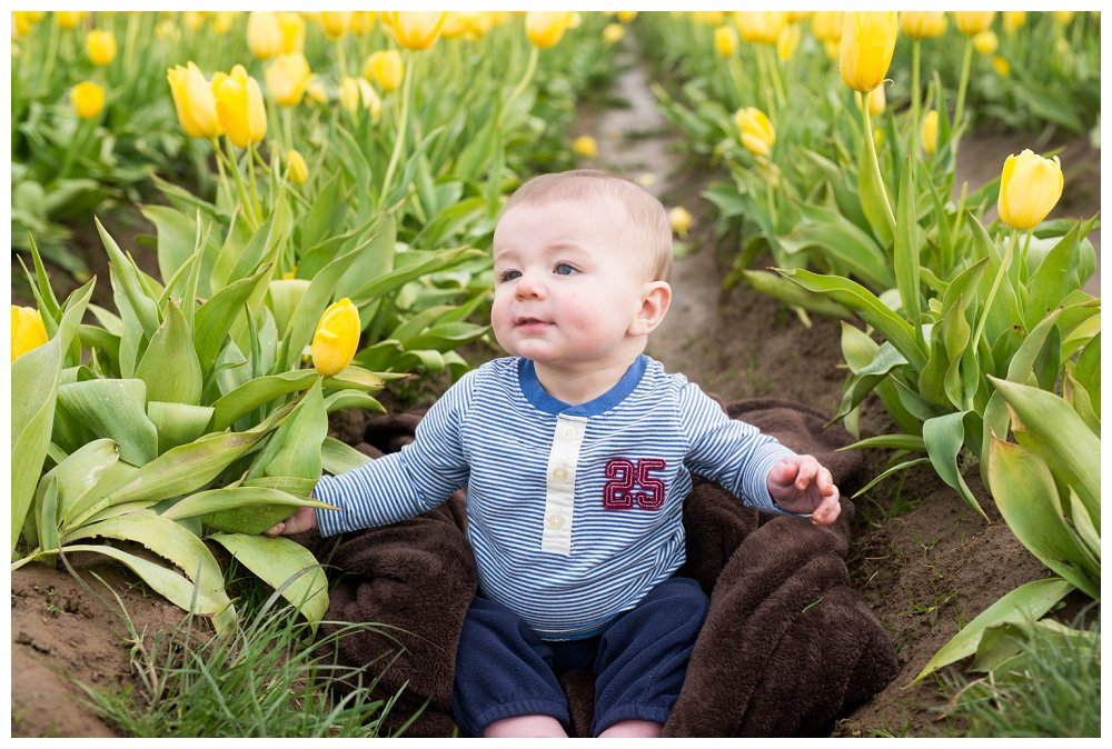 Vancouver Photographer Photography Portland Tulips_0014
