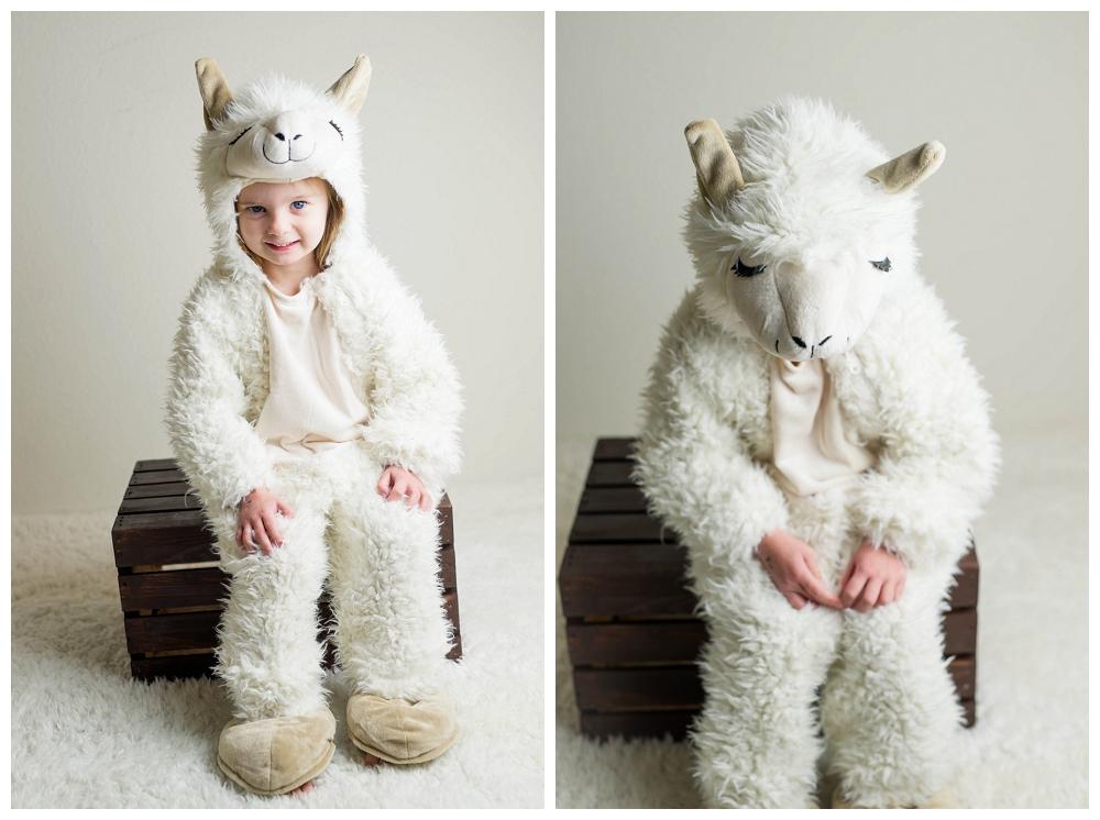 Little Llama  :  Halloween  :  Portland Children's