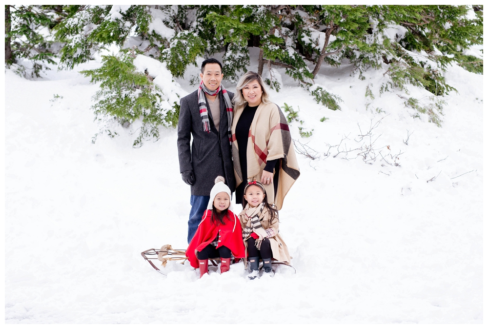 Portland Holiday Christmas Mt Hood Family Newborn Photographer Photography_0003