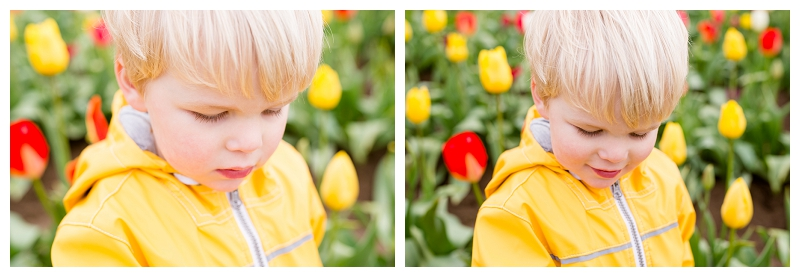 Woodburn Tulip Festival Family Photographer Photography_0049