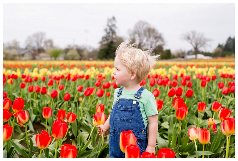 Woodburn Tulip Festival Family Photographer Photography_0053