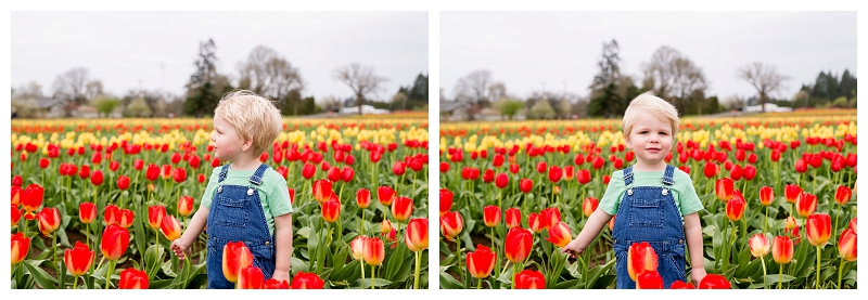 Woodburn Tulip Festival Family Photographer Photography_0054