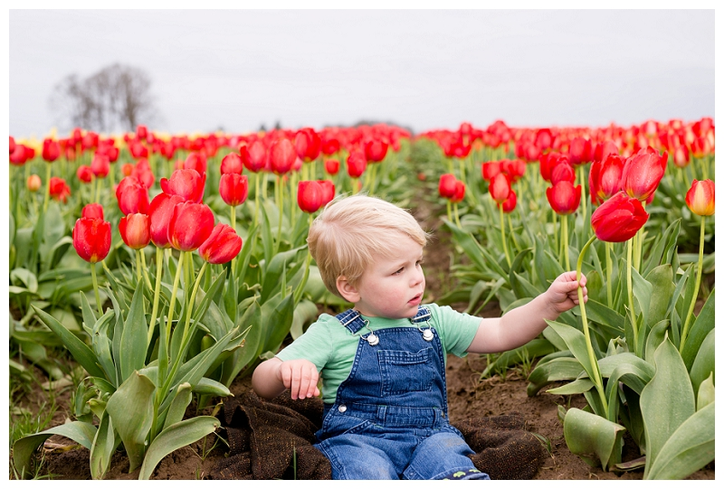 Woodburn Tulip Festival Family Photographer Photography_0055