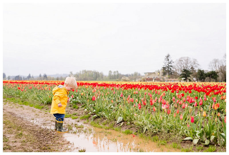 Woodburn Tulip Festival Family Photographer Photography_0058