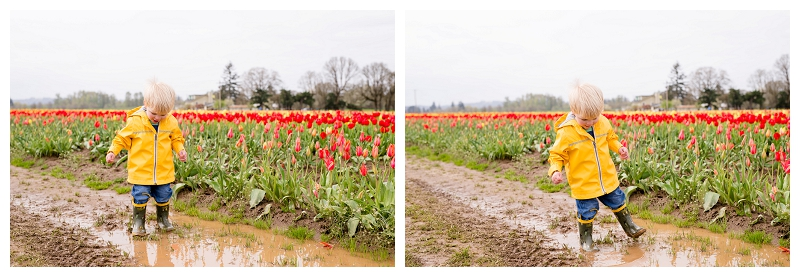 Woodburn Tulip Festival Family Photographer Photography_0059